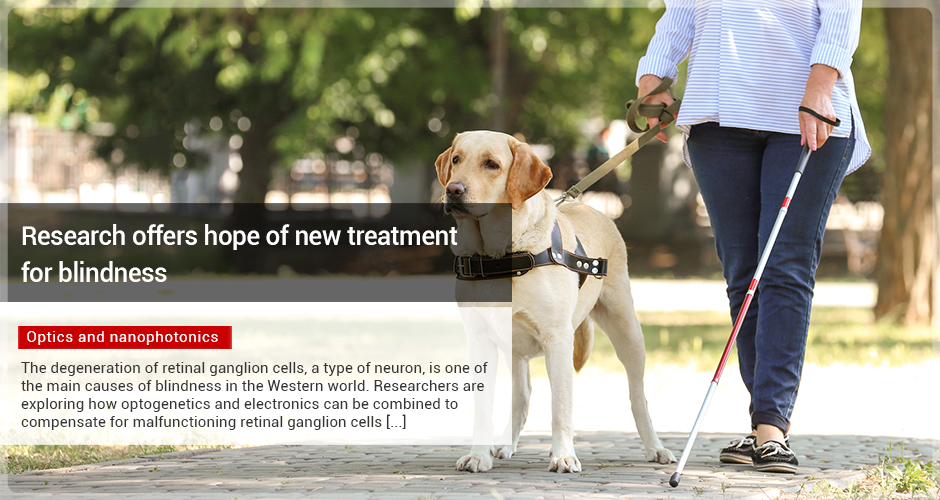 Research offers hope of new treatment for blindness